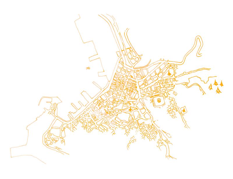 Illustrazione: Piantina delle vie del centro di Trieste